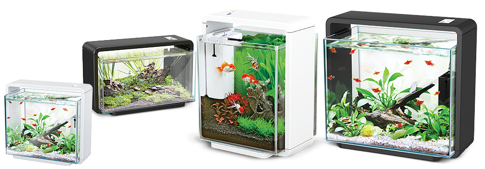 natur biotop aquarium mit led beleuchtung. Black Bedroom Furniture Sets. Home Design Ideas