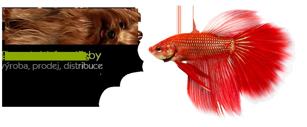 fish_de