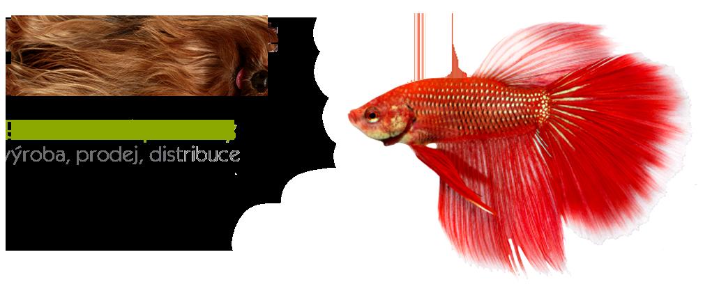 fish_en